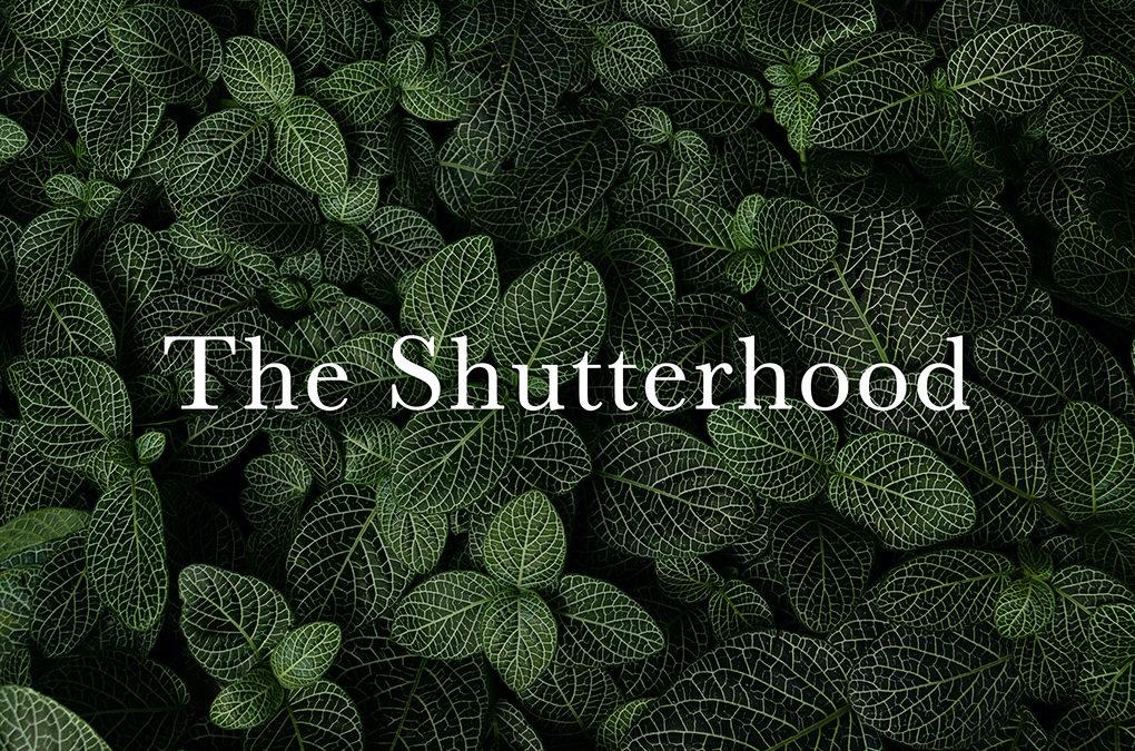 Shutterhood launch giveaway!
